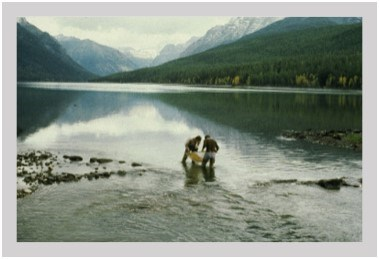 Water sampling in Glacier National Park, outlet of Bowman Lake
