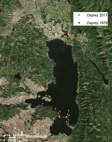A map of the Osprey twins surveys of active osprey nests in 1976 compared to 2017