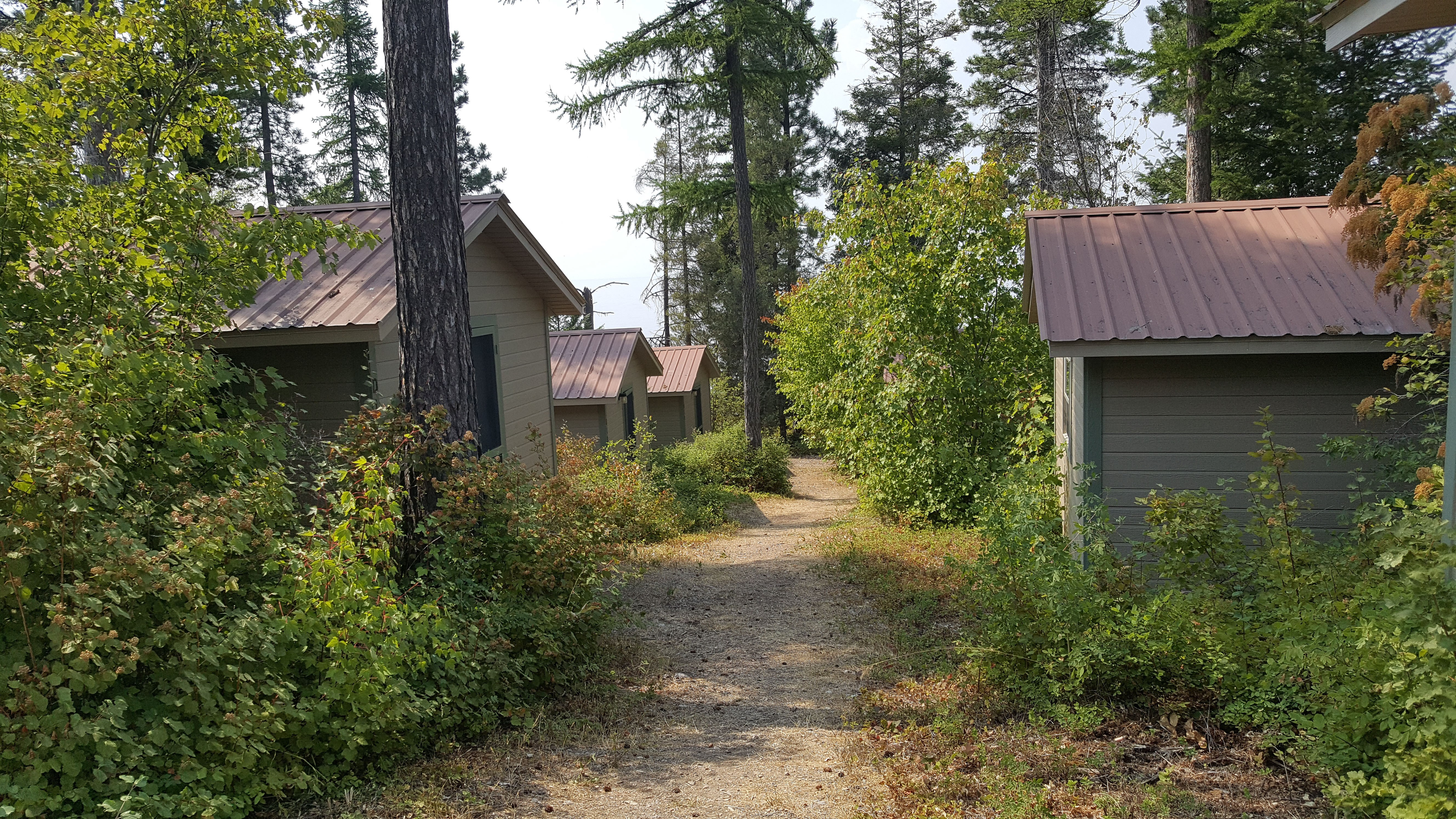 View of walking path between lakeshore cabins