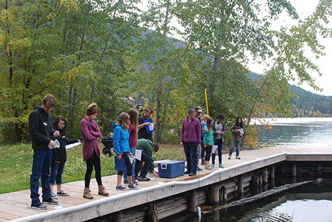 Students take water samples from the FLBS dock