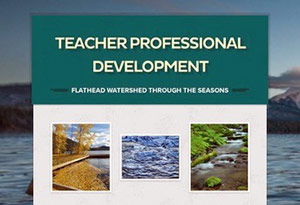 preview image of the teacher professional development pdf