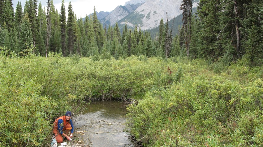 New Program Assists Watershed Groups