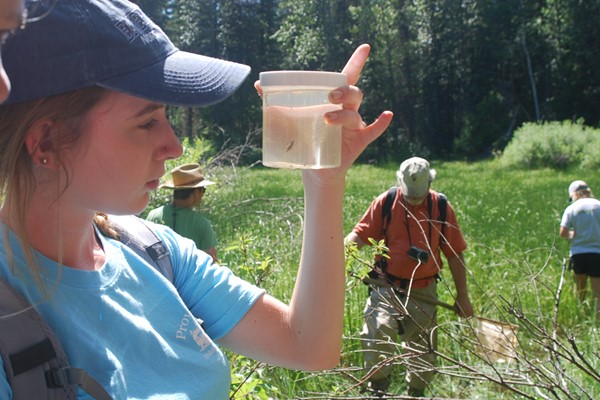 Student inspects a field sample